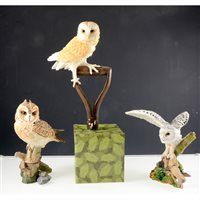 Lot 69-A collection of fourteen Country Artists' owls  by David Ivey, all boxed