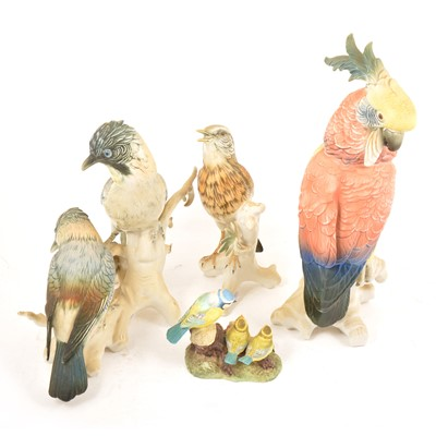 Lot 18 - Three large Karl Ens porcelain bird models, and other bird groups.