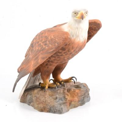 Lot 45 - Royal Crown Derby Bald Eagle figurine.